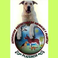 Refugio Plasencia teaming