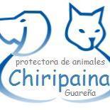 Chiripaina Asociación Protectora de Animales