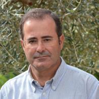Guillem Palomo Tejada