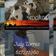 July Torres