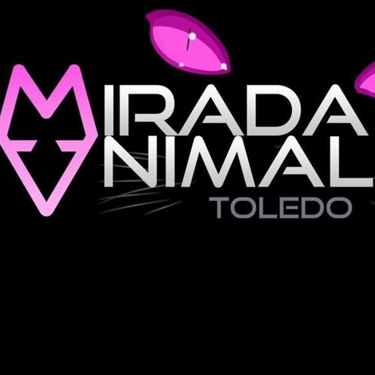 MIRADA ANIMAL TOLEDO Asociación protectora de animales