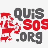 quissos org