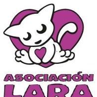 Asociación-Lara Lara
