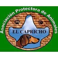 Apa El Capricho