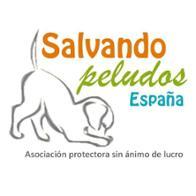 Salvando Peludos España