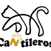 Cantileros  ASOCIACIÓN PARA LA PROTECCIÓN ANIMAL