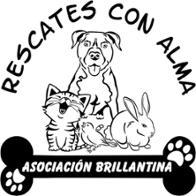 Asociación Brillantina Rescates con Alma