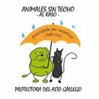 Animales Sin Techo