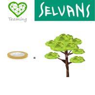 Team Sèlvans