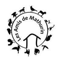 Amis de Mathurin