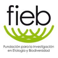 Fundación FIEB Fundación FIEB